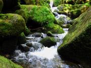 Wasserfällen in Triberg