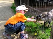 Natur- und Tierpark Brüggen