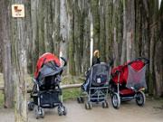 Der Buggy: Kleinkinder auf Rädern