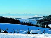 Skifahren in Herrischried