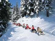 Skifahren und Rodeln in Lenzkirch