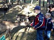 Tier- und Freizeitpark Germendorf