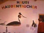 Naturschutzzentrum Eriskircher Ried