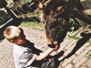 Kindergeburtstag im Heimat-Tierpark Olderdissen in Bielefeld