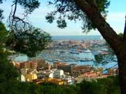 Wohin beim Familienurlaub in Palma de Mallorca