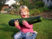 Vegetarische Ernährung für Kinder