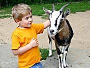 Münchner Kinder- und Jugendfarm