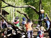 Kindergeburtstag im Braunschweiger Wald