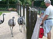 Tierpark Tinnum auf Sylt