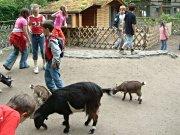 Tierpark Wittenberg: