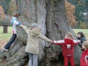 Kindergeburtstag im Harz