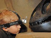 Kindergeburtstag im Museum am Schölerberg