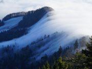 10 Ausflugstipps für Familien im Schwarzwald