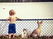 Welches Haustier für mein Kind