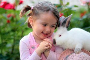 Welches Haustier für mein Kind - Kaninchen