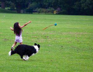 Hund und Kind Bewegung