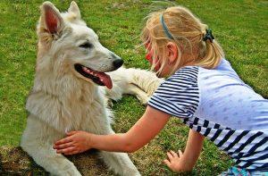 Hund und Kind Verantwortung